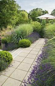 lavenders silver pittosporum and grasses make for a lush