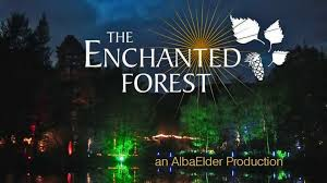 enchanted forest of light tickets enchanted forest of light opens at descanso gardens la jaja