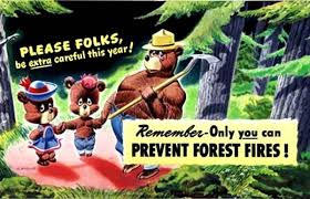 Only You Can Prevent Forest Fires Meme - only you can prevent forest fires joke best forest in the world 2017
