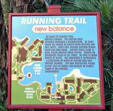 Mapping Running Routes by Get U0026 Stay Fit At Disney Running Trails At Wdw