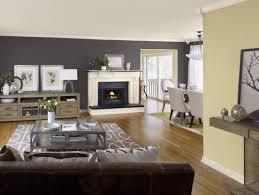 living room colours boncville com