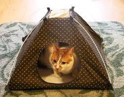 comfy popup pet tent indoor u0026 outdoor dog bed cat tent bed w