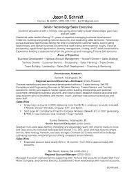 Great Sales Resume Resume Example Of Sales Resume