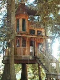 Tree House Home This Bainbridge Island Home Comes With Indoor Treehouse