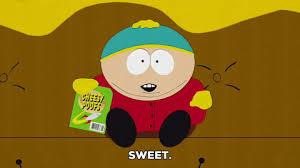 Eric Cartman Halloween Costume 20 Despicable Moves Donald Trump Totally Stole Eric Cartman
