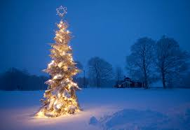 outdoor christmas tree outdoor christmas tree a winter image of christmas tree w flickr