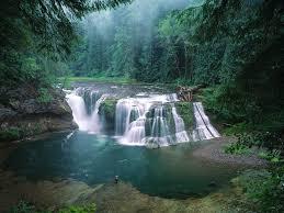Washington waterfalls images Lower lewis river falls gifford pinchot national forest jpg