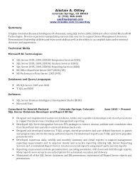 Software Testing Resume 100 Sample Testing Resumes For Manual Testing Pay To Write