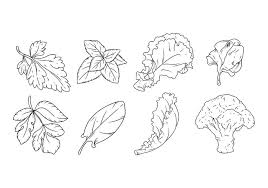 free hand drawing vegetables vector download free vector art