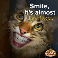 Almost Friday Meme - spin palace on twitter it s almost friday just one reason to