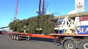 trafalgar square christmas tree and worlds largest lego ship at