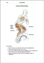 Human Anatomy Textbook Pdf Golf Anatomy Ebook Craig Davies Vince Disaia