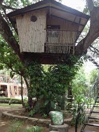 file tree house jpg file pasonanca treehouse jpg universal stewardship