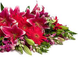 flower bouquets s bouquets flowerbud