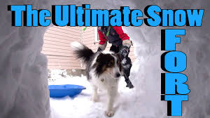 How To Build An Igloo In Your Backyard - how to build the ultimate snow fort snow igloo style youtube