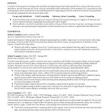 Sample Camp Counselor Resume by Sample Career Advisor Resume Example Banking Resume Template 21