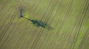 chambre agriculture landes avenir de la zad de notre dame des landes l incompréhension de la