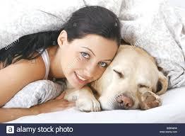 Cozy Cave Dog Bed Xl Dog Sleep Bed U2013 Thewhitestreak Com