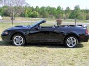 2001 Black Mustang Ford Mustang 77 Used 2001 Gt Convertible Black Ford Mustang Cars