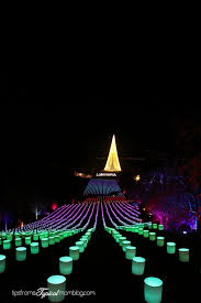 luminaria at thanksgiving point a review tips from a typical