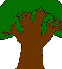 cartoon tree drawing clipart library clip art library