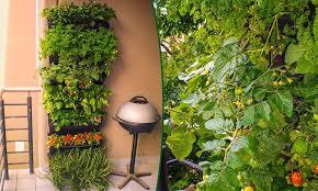 indoor herb garden wall planter garden design ideas