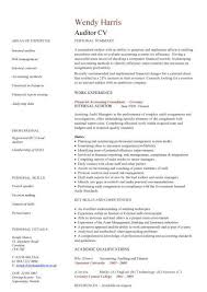 Credit Controller Resume Sample by Auditor Cv Sample U2022bookkeeping And Accounting Skills On Site