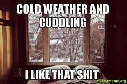 Cold Weather Meme - cold weather and cuddling i like that shit make a meme