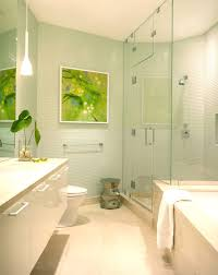 Green Bathroom Ideas by Bathroom Contemporary Beach Bathroom Design Featuring Light