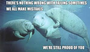 Manatee Meme - scienceandrollerskates i made more calming slipping the trap