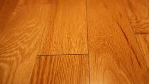 how to clean drool stains from waxed hardwood floors homesteady