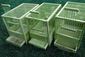 produttori gabbie per uccelli bali gabbia per uccelli con gabbie per canarini prezzi e ferplast