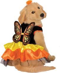 butterfly halloween costume pet butterfly halloween costume