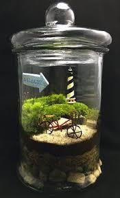 best 25 closed terrarium plants ideas on pinterest terrarium