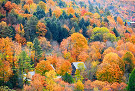fall foliage 2017 autumn leaves change