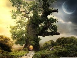 tree house 4k hd desktop wallpaper for