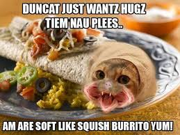 Meme Burger - dune cat burger dune know your meme