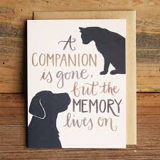 sympathy cards for pets best 25 pet sympathy cards ideas on dog cards