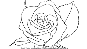 how to draw a beautiful rose youtube