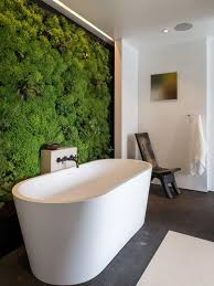 Modern Bathroom Tub Modern Bathtub Designs Pictures Ideas Tips From Hgtv Hgtv