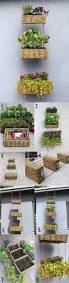 Garden Baskets Wall by 25 Best Hanging Baskets Images On Pinterest Hanging Baskets