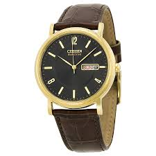 Tan And Tone Prices Citizen Eco Drive Watches Jomashop