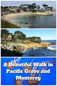 a beautiful walk in pacific grove and monterey amateur traveler