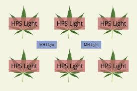 Hps Lights The Ideal Marijuana Grow Light Setup U2013 Grow Light Central