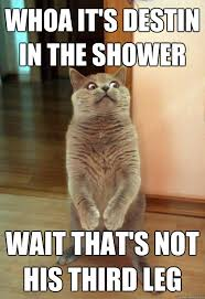 Meme Shower - whoa it s destin in the shower cat meme cat planet cat planet