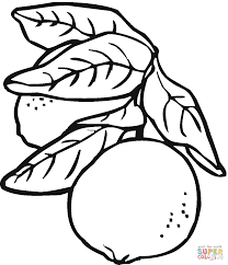lemon 8 coloring page free printable coloring pages