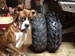 new front tires interco swamp lites from ntw suzuki atv forum