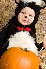 Skunk Halloween Costumes Smiling Baby Skunk Stock Photo Picture Royalty Free Image
