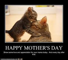 Mothers Day Funny Meme - mothers day funny meme 28 images happy mothers day memes funny