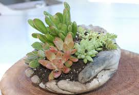 learn how to make these concrete garden hands garden lovers club